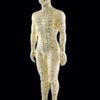 Vi behandler dine lændesmerter med akupunktur